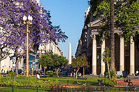 PLAZA 25 DE MAYO, JACARANDA FLORECIDO, CIUDAD DE BUENOS AIRES, ARGENTINA (PHOTO © MARCO GUOLI - ALL RIGHTS RESERVED)