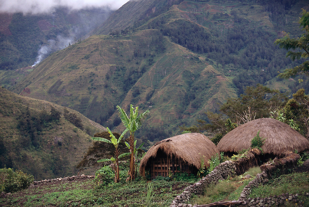 Traditional houses near Karima in the central highlands of Irian Jaya, Indonesia. Image from the book project Man Eating Bugs: The Art and Science of Eating Insects.