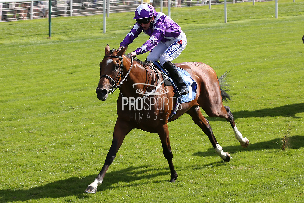 COOLAGH FOREST (7) ridden by Paul Hanagan and trained by Richard Fahey winning The Hanson Springs Handicap Stakes over 1m 2f (£15,000) during the Family Race Day held at York Racecourse, York, United Kingdom on 8 September 2019.