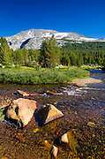 Stream in Dana Meadows under Mount Gibbs, Tuolumne Meadows, Yosemite National Park, California USA