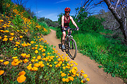 Mountain biking in Sycamore Canyon, Point Mugu State Park, Malibu, California USA