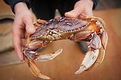 Oregon Seafood
