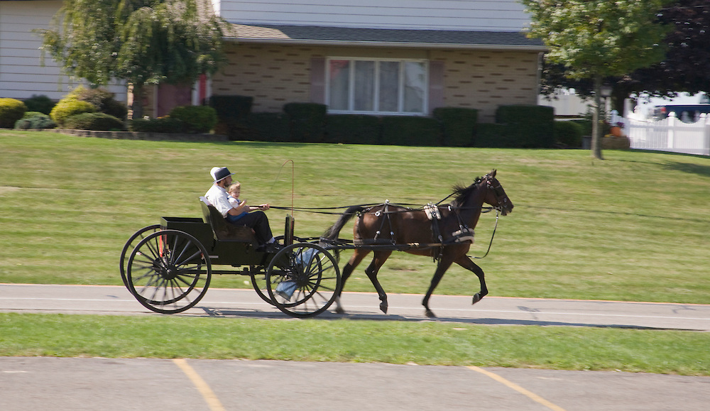 Family rides in Amish Cart in Ohio.