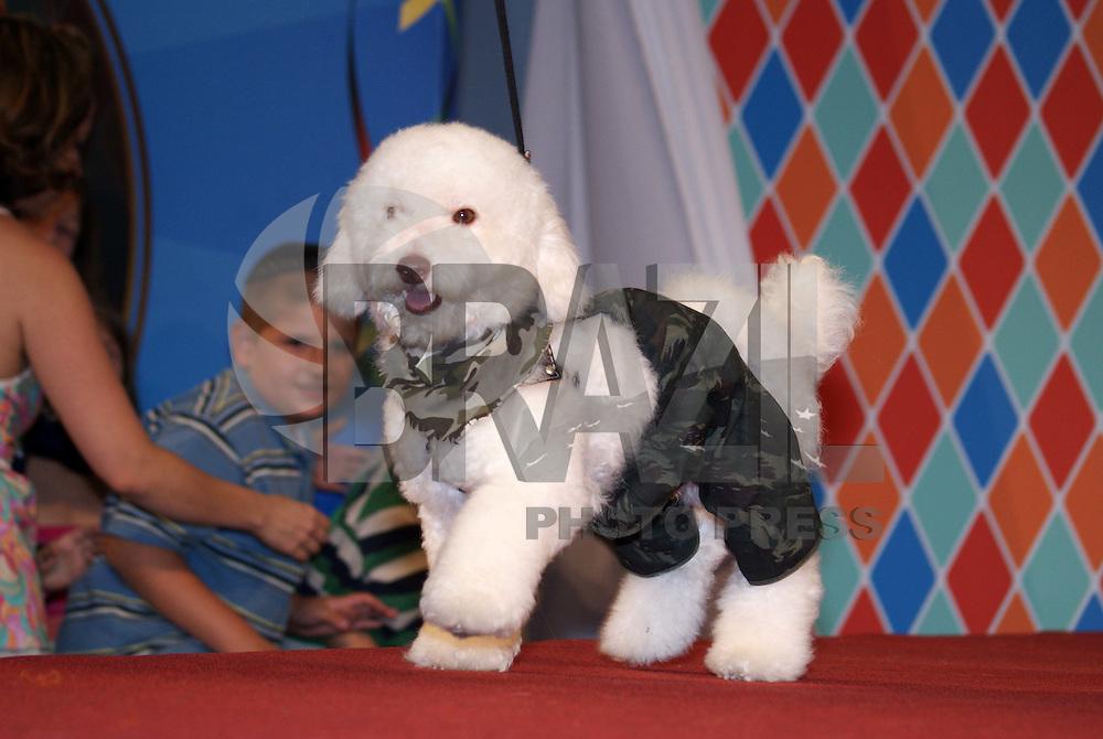 SÃO PAULO, SP, 15 DE FEVEREIRO DE 2010 - CÃOCURSO DE FANTASIAS - A Cidade São Paulo aproveita o carnaval e promove o 1º concurso de fantasias para cachorros, o concurso tem cachorros de todas as raças e tamanhos. O concurso foi apresentado pelo Dr Pet. No Shopping Higianópolis na região central da capital paulista. (FOTO: WILLIAM VOLCOV / BRAZIL PHOTO PRESS