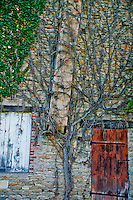 Vine covered wall and chimney of an old traditional stone house in France.