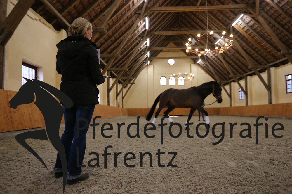 Hüntelmann, Sabrina<br /> Horse Competence Center<br /> © www.sportfotos-lafrentz.de/Stefan Lafrentz
