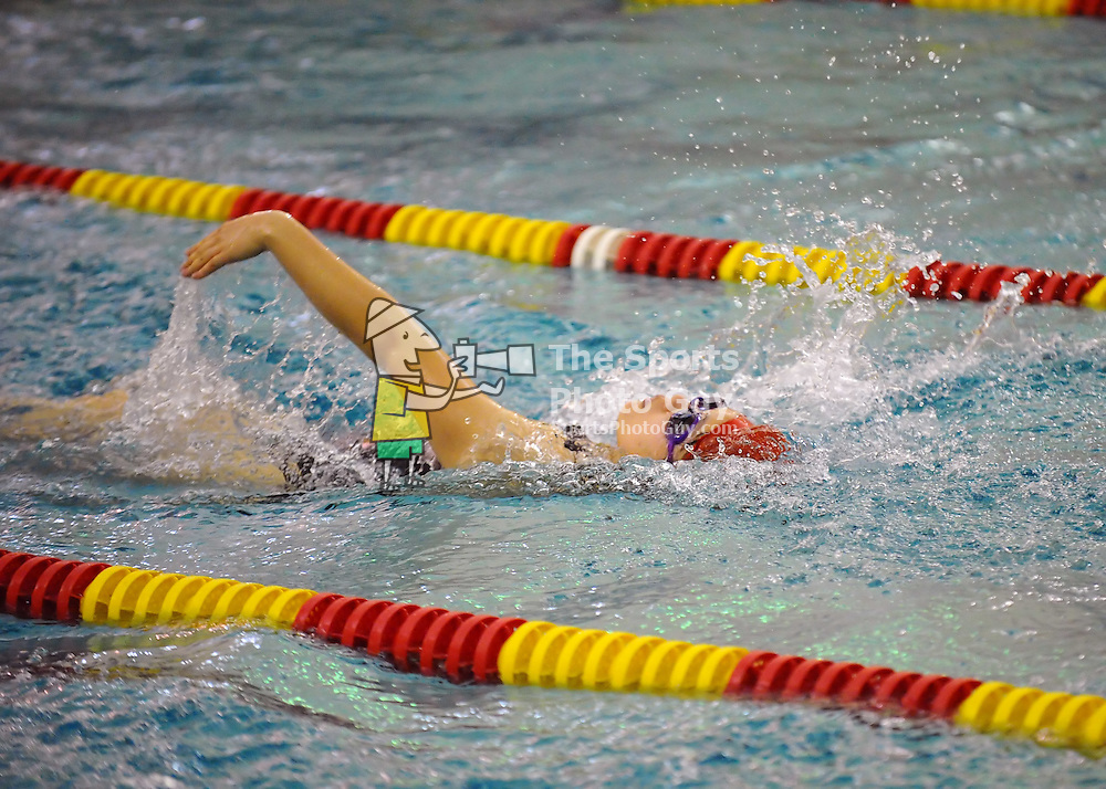 VMI Swimming & Diving vs Limestone