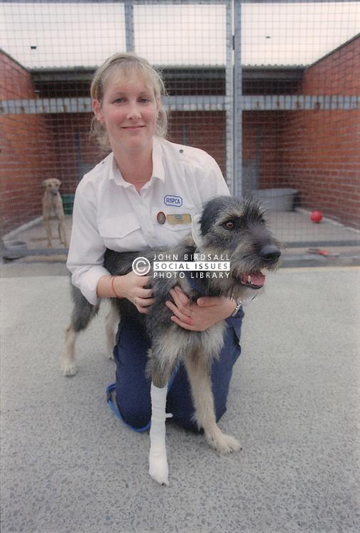 RSPCA worker nursing injured dog,