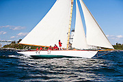 Nellie sailing in the Museum of Yachting Classic Yacht Regatta.