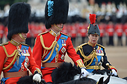 Image ©Licensed to i-Images Picture Agency. 14/06/2014. <br /> <br /> Pictured are Prince Charles (left), Prince William (centre)  and Princess Anne (right) on horse back at The Trooping of the Colour.<br /> <br /> <br /> Trooping The Colour, Her Majesty The Queens Birthday Parade at Horse Guards Parade, London, UK.<br /> <br /> Saturday 14th of June 2014.<br /> Picture by Ben Stevens / i-Images
