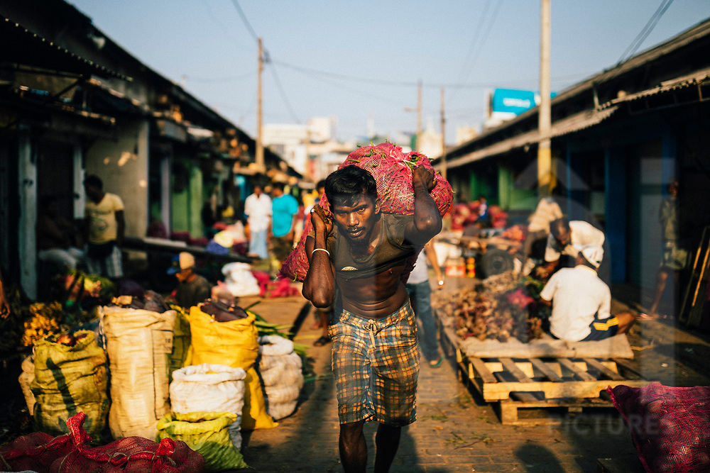 A man carries a bag of vegetables at a local wholesale market in downtown Colombo, Sri Lanka, Asia