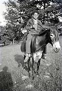 young boy sitting on a donkey