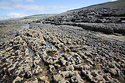 Rocky limestone pavement on the  shoreline and view of the Burren from Fanore, County Clare, Ireland