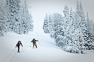 Two men clibming up Angle Mountain at Togwotee Pass, Bridger Teton National Forest, Wyoming with their ski in snow.  Snow coated trees in the background.  Model Released #0012010, #0022010