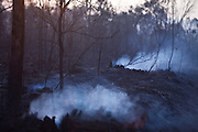 Nova Lima_MG, Brasil.<br /> <br /> Incendio na Reserva Ecologica de Fechos, Nova Lima, Minas Gerais, esse incendio e comum no Brasil na epoca da seca, muitos deles iniciados de forma criminosa.<br /> <br /> Fire in Fechos Ecological Station in Nova Lima, Minas Gerais. This fire is common in Brazil during the dry season, many of them started in a criminal way.<br /> <br /> Foto: JOAO MARCOS ROSA / NITRO