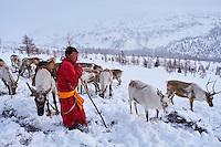 Mongolie, province de Khovsgol, les Tsaatans, éleveurs des rennes, transhumance hivernale, jeune homme appelant ses rennes // Mongolia, Khovsgol privince, the Tsaatan, reindeer herder, the winter transhumance, young man crying to call his reindeers