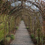 Rose Arbour, Devon