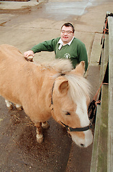 Man with learning disability grooming horse,