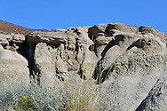 Geologigal formations known as 'hoodoos'; the result of erosion. Badlands, Dinosaur Provincial Park, Alberta, Canada.