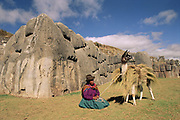 Pack Llama & Quechua Indian at Sacsayhuaman<br />
