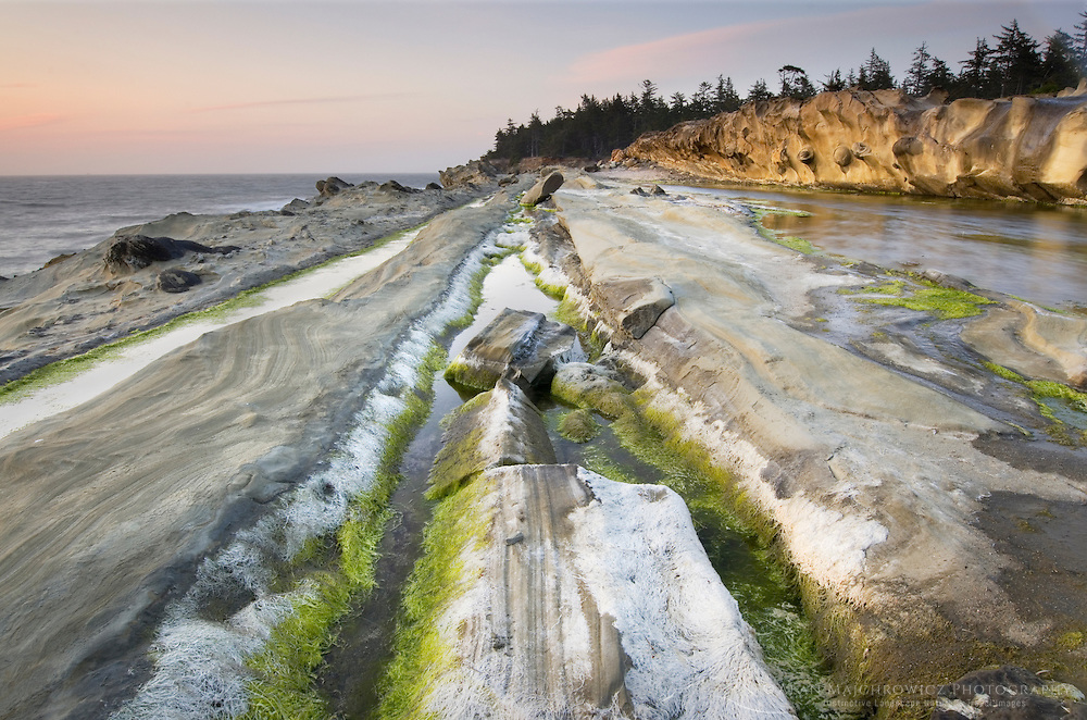 Sandstone cliffs of Shore Acres State Park on the Oregon Coast
