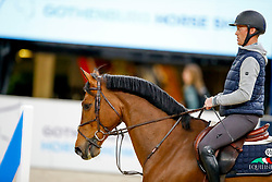 Bruynseels Niels, BEL, Delux van T&L<br /> Training<br /> Longines FEI World Cup Finals Jumping Gothenburg 2019