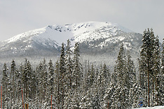 Snowy Mtn Landscapes
