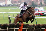 GETAWAY TRUMP ridden by Harry Cobden and trained by Paul Nicholls jumps the last before winning The Stagecoach West Scotland Novices Hurdle Race over 2m (£15,300) during the Scottish Grand National, Ladies day at Ayr Racecourse, Ayr, Scotland on 12 April 2019.