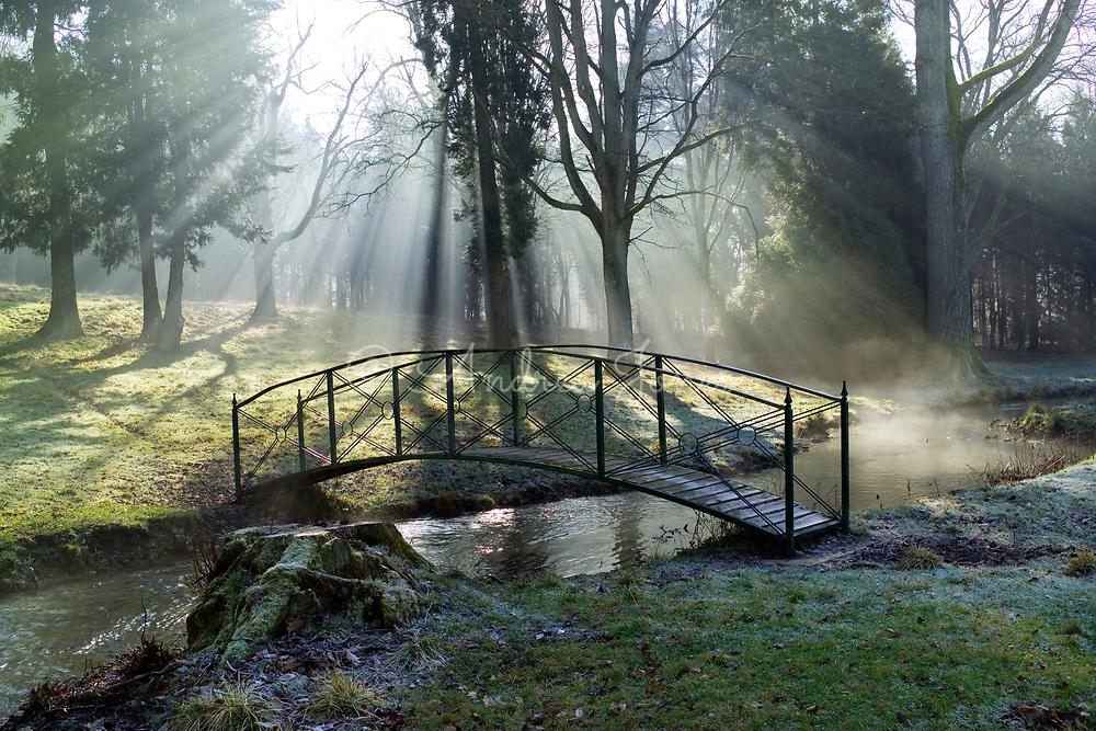 Sunrise through the woodland <br /> Colesbourne Park, Cheltenham, Gloucestershire, England, UK