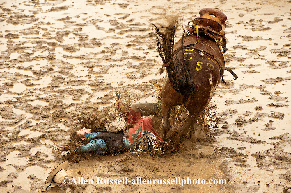 Saddle Bronc rider bucked off in mud, Miles City Bucking Horse Sale, Montana