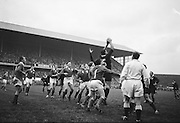 Irish eyes on the ball but New Zealands K F Gray extends his full height to grasp this ball from line out,..Irish Rugby Football Union, Ireland v New Zealand, Tour Match, Landsdowne Road, Dublin, Ireland, Saturday 7th December, 1963,.7.12.1963, 12.7.1963,..Referee- H Keenen, Rugby Football Union, ..Score- Ireland 5 - 6 New Zealand, ..Irish Team, ..T J Kiernan, Wearing number 15 Irish jersey, Full Back, Cork Constitution Rugby Football Club, Cork, Ireland,..J Fortune, Wearing number 14 Irish jersey, Right Wing, Clontarf Rugby Football Club, Dublin, Ireland,..P J Casey, Wearing number 13 Irish jersey, Right Centre, University College Dublin Rugby Football Club, Dublin, Ireland, ..J C Walsh,  Wearing number 12 Irish jersey, Left Centre, University college Cork Football Club, Cork, Ireland,..A T A Duggan, Wearing number 11 Irish jersey, Left Wing, Landsdowne Rugby Football Club, Dublin, Ireland,..M A English, Wearing number 10 Irish jersey, Stand Off, Landsdowne Rugby Football Club, Dublin, Ireland, ..J C Kelly, Wearing number 9 Irish jersey, Captain of the Irish team, Scrum Half, University College Dublin Rugby Football Club, Dublin, Ireland,..P J Dwyer, Wearing number 1 Irish jersey, Forward, University College Dublin Rugby Football Club, Dublin, Ireland, ..A R Dawson, Wearing number 2 Irish jersey, Forward, Wanderers Rugby Football Club, Dublin, Ireland, ..R J McLoughlin, Wearing number 3 Irish jersey, Forward, Gosforth Rugby Football Club, Newcastle, England, ..W J McBride, Wearing number 4 Irish jersey, Forward, Ballymena Rugby Football Club, Antrim, Northern Ireland,..W A Mulcahy, Wearing number 5 Irish jersey, Forward, Bective Rangers Rugby Football Club, Dublin, Ireland,  ..E P McGuire, Wearing number 6 Irish jersey, Forward, University college Galway Football Club, Galway, Ireland,  ..P J A O' Sullivan, Wearing  Number 8 Irish jersey, Forward, Galwegians Rugby Football Club, Galway, Ireland,..N A Murphy, Wearing number 7 Irish jersey, Forward, Cork Constitution