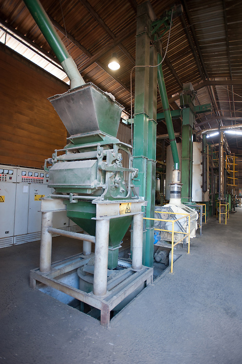 Canola oil (rapeseed) production<br /> at  Molinera Gorbea, a grain processor involved in the manufacture of fish food<br /> Temuco Chile