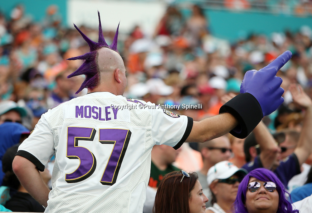 A Baltimore Ravens fan with a team jersey, and purple spiked hair points with a foam finger during the Baltimore Ravens 2015 week 13 regular season NFL football game against the Miami Dolphins on Sunday, Dec. 6, 2015 in Miami Gardens, Fla. The Dolphins won the game 15-13. (©Paul Anthony Spinelli)