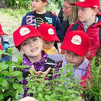 AMA Obst- Und Gemüserallye 2015 - 1
