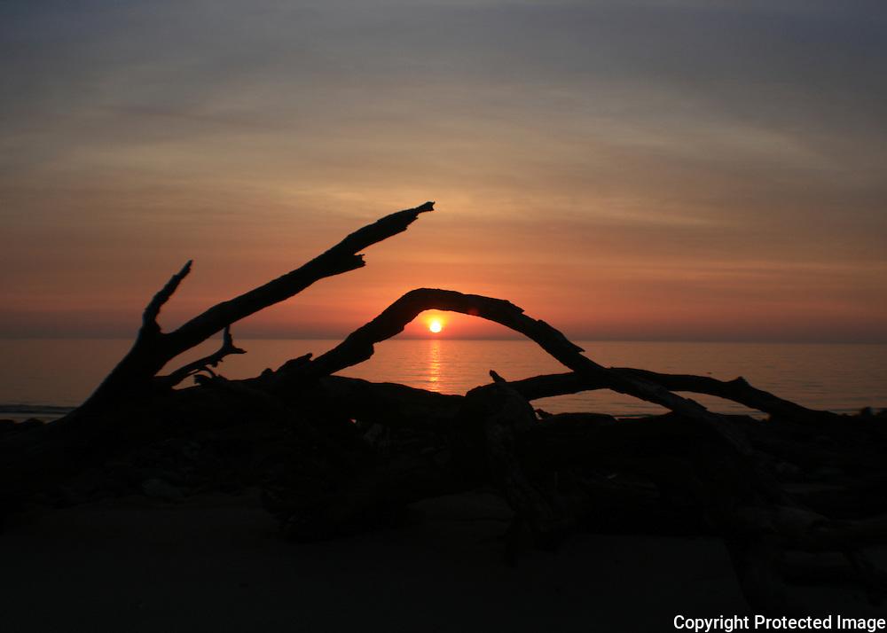 Driftwood Beach at sunrise, sunset, Jekyll Island 3, fisheye view