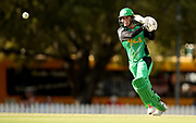 Erin Osborne during the Women's Big Bash League (WBBL) match between Melbourne Stars and Adelaide Strikers at Karen Rolton Oval in Adelaide, Friday, December 21, 2018. (AAP Image/Kelly Barnes) NO ARCHIVING, EDITORIAL USE ONLY, IMAGES TO BE USED FOR NEWS REPORTING PURPOSES ONLY, NO COMMERCIAL USE WHATSOEVER, NO USE IN BOOKS WITHOUT PRIOR WRITTEN CONSENT FROM AAP