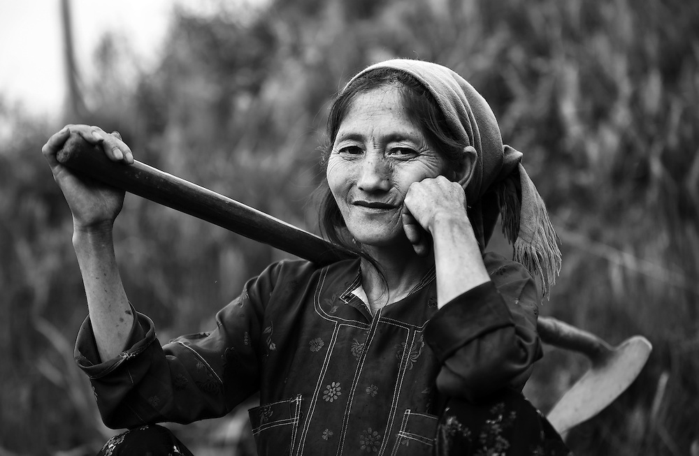 A womanl working in the corn fields near Ha Giang, Vietnam.