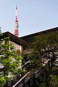 Komyoji Temple, Kamiyacho, Tokyo, Japan, April 13, 2019. Tokyo Tower is in the background. Matsumoto Shoukei is the author of A Monk's Guide to a Clean House and Mind (Penguin). He hold periodic cleaning sessions at his temple in Tokyo's Kamiyacho district.