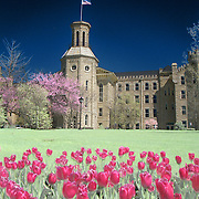 "This is a digital combination of an infrared image and a visible color image.  The color picture is used to colorize the infrared image giving a foreign and new perspective of Blanchard Hall. Wheaton College in Wheaton, IL was founded in 1860.   Wheaton's ""Old Main."" Blanchard was built in four sections beginning in 1853 and was completed in 1927. Named for Jonathan Blanchard, the College's founder and first president, and his son, Charles Blanchard, the second president, the building is the oldest and most recognized on campus..The building's castle-like architecture was patterned after buildings at Oxford University which Dr. Jonathan Blanchard admired. It is constructed of native Illinois limestone that was quarried in Batavia, Illinois."
