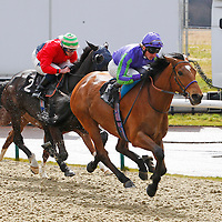 Stand Guard and Adam Kirby winning the 2.30 race