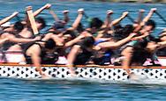 新华社照片,洛杉矶,2017年7月31日<br />     (国际)(13)第二十一届加州长滩龙舟节<br />     7月30日,参赛选手奋力划桨。<br />     在美国洛杉矶长滩市海滨体育场举行的第二十一届年度长滩龙舟节,吸引百余队上千选手参赛。长滩龙舟节是加州最大的龙舟比赛,同时也展示了中国古代龙舟赛的运动。<br />     新华社发(赵汉荣摄)<br /> Dragon Boat racers compete during a 500-meter race at the 21st Annual Long Beach Dragon Boat Festival at Marine Stadium in Long Beach, California, the United States, on July 30, 2017. The Long Beach Dragon Boat Festival is held every year in July at Marine Stadium to hosting the largest dragon boat competitions in California. It showcases the ancient Chinese sport of dragon boat racing. (Xinhua/Zhao Hanrong)(Photo by Ringo Chiu)<br /> <br /> Usage Notes: This content is intended for editorial use only. For other uses, additional clearances may be required.