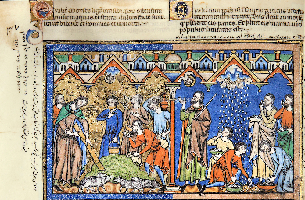 "(left) Sweetener: Moses, following the Lord's command, casts the tree into the bitter waters. The Israelites gather around with drinking cups and vessels to collect the sweetened waters. In the foreground, a group of sheep quenches its thirst. (Exodus 15:24ñ25); (right) Manna: Hunger has overcome the Israelites in the wilderness, and the congregation begins to murmur against Moses. The Lord hears these complaints, however, and rains bread from heaven upon the people. The Israelites collect the bread, each according to his own need, following the instructions Lord has given to Moses. (Exodus 16:11ñ15). Excerpt of the first edition of the ""Crusader Bible"", 13th century manuscript kept in the Pierpont Morgan Library in New York, on natural parchment made of animal skin published by Scriptorium SL in Valencia, Spain. © Scriptorium / Manuel Cohen"