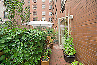 Terrace at 736 West 187th St