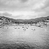 Catalina Island Avalon Bay black and white picture with hillside buildings, businesses, and boats. Santa Catalina Island is part of Southern California in the United States.