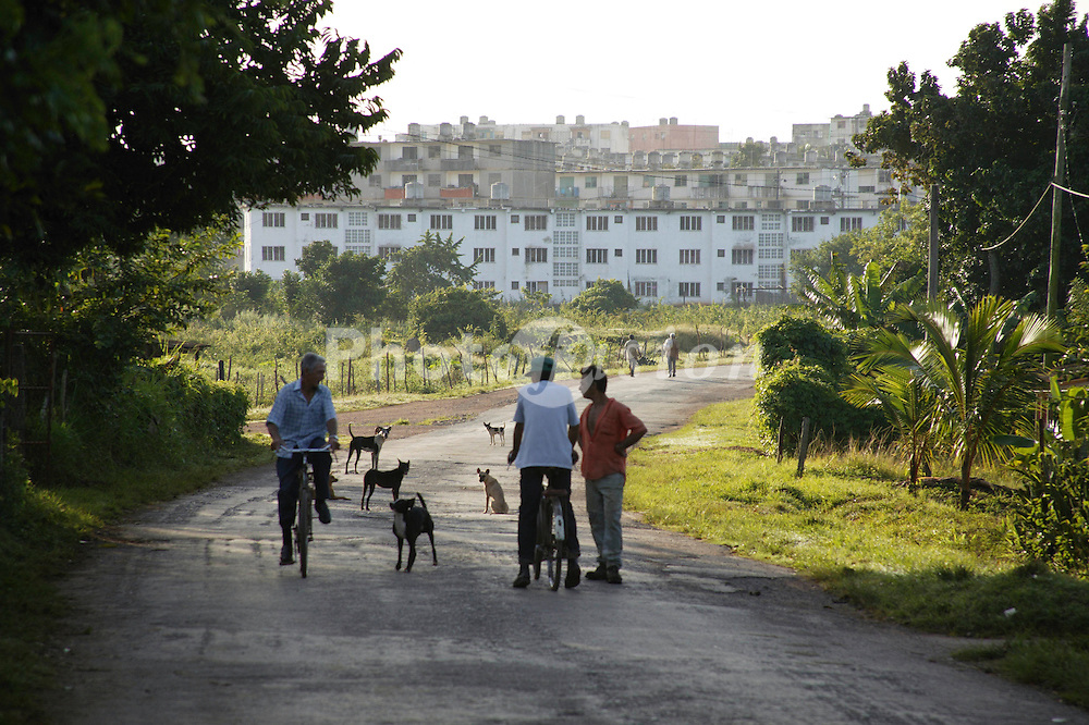 Street scene with people and dogs at Santa Lucia; Pinar Province; Cuba,