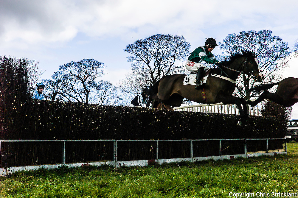 Corbridge, Northumberland, England, UK. 28th February 2016.  OvertoSam ridden by Tom Hamilton jumps a fence en route to victory at the Tynedale Hunt annual Point to Point horse racing fixture.