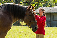 A girl cares for a horse at Linvilla Orchards in Media, Pa.,  September 22, 2018. (©2018 Wendelin Ray Photography)