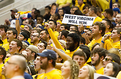 Feb 20, 2016; Morgantown, WV, USA; A West Virginia Mountaineers fan holds up a sign during the first half against the Oklahoma Sooners at the WVU Coliseum. Mandatory Credit: Ben Queen-USA TODAY Sports
