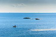 Man ror i jolle på havet i Stockholms  ytterskärgård
