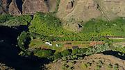 Farm, Waimea Valley, Kauai, Hawaii